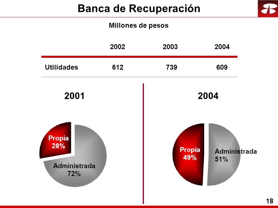 18 Banca de Recuperación Utilidades 200220032004 612739609 20012004 Propia 49% Administrada 51% Propia 28% Administrada 72% Millones de pesos