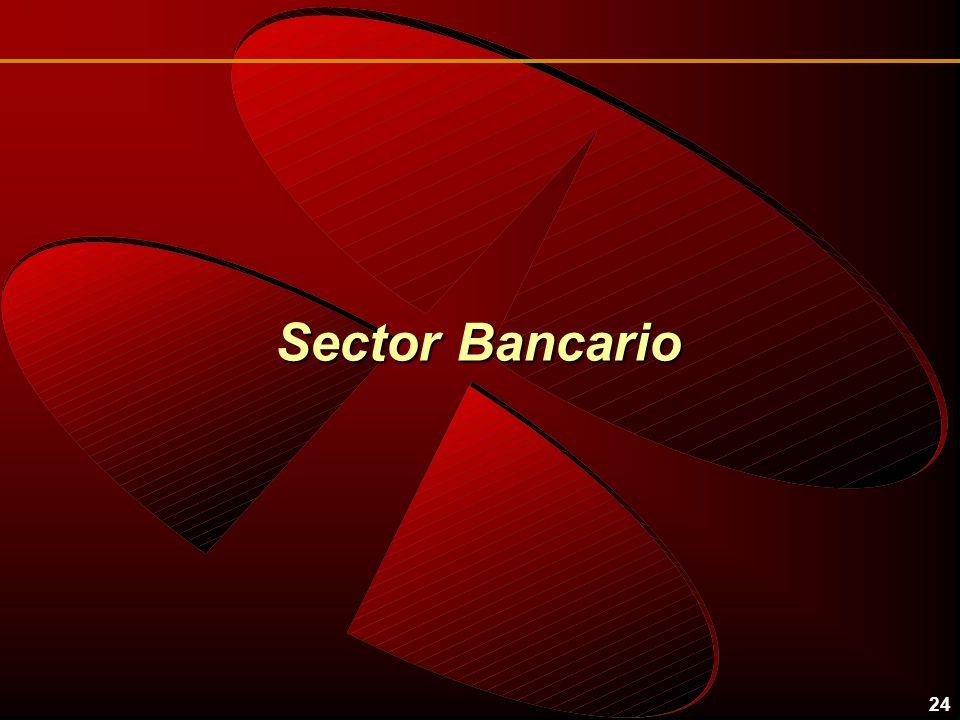 24 Sector Bancario