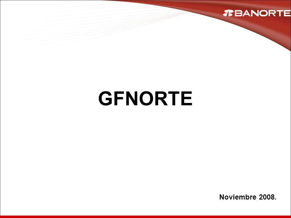 11 GFNORTE Noviembre 2008.