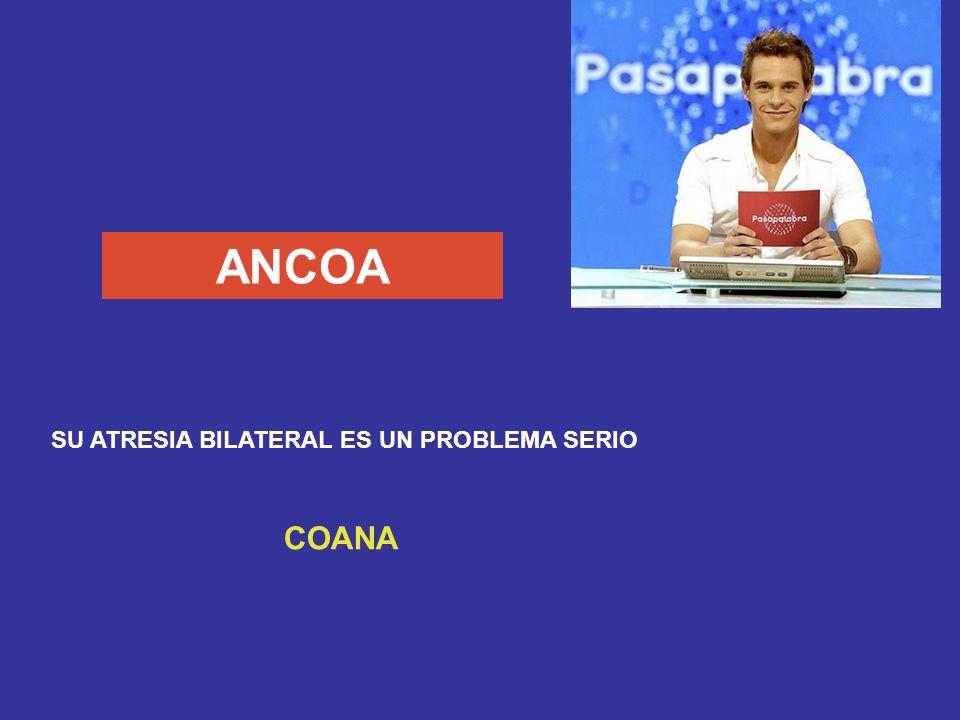 HONACA ASPECTO DEL ABSCESO AMEBIANO HEPÁTICO ANCHOA (PASTA DE)