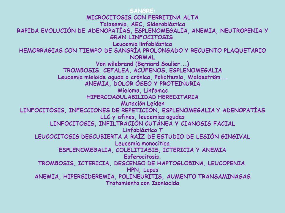 SANGRE: MICROCITOSIS CON FERRITINA ALTA Talasemia, AEC, Sideroblástica RAPIDA EVOLUCIÓN DE ADENOPATÍAS, ESPLENOMEGALIA, ANEMIA, NEUTROPENIA Y GRAN LINFOCITOSIS.