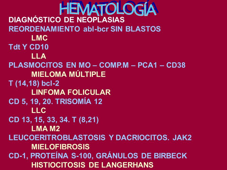 DIAGNÓSTICO DE NEOPLASIAS REORDENAMIENTO abl-bcr SIN BLASTOS LMC Tdt Y CD10 LLA PLASMOCITOS EN MO – COMP.M – PCA1 – CD38 MIELOMA MÚLTIPLE T (14,18) bcl-2 LINFOMA FOLICULAR CD 5, 19, 20.