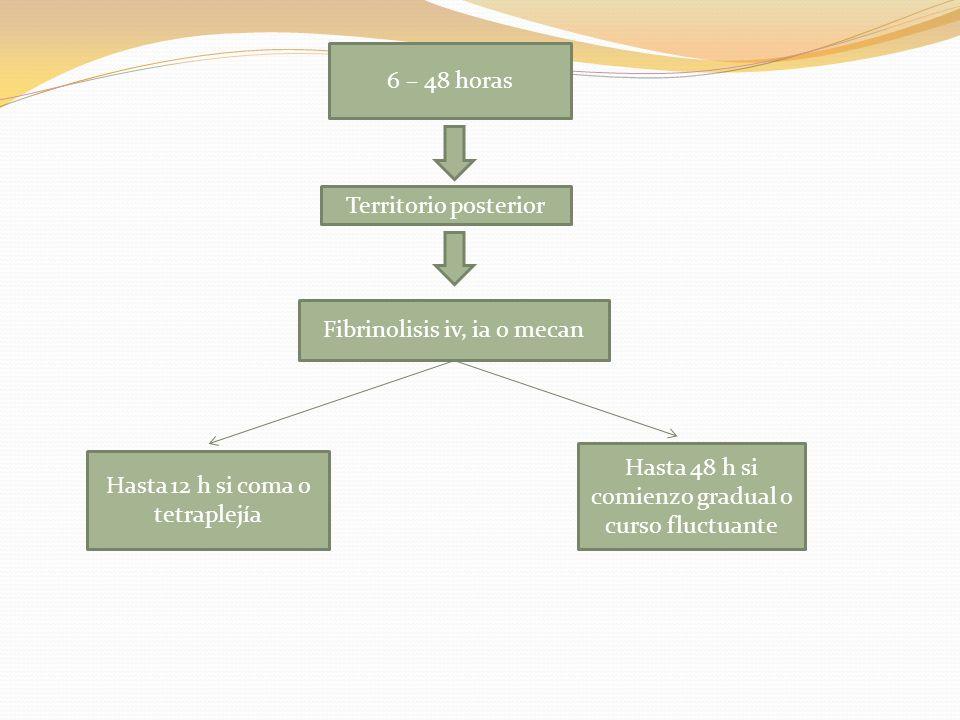 6 – 48 horas Territorio posterior Fibrinolisis iv, ia o mecan Hasta 12 h si coma o tetraplejía Hasta 48 h si comienzo gradual o curso fluctuante