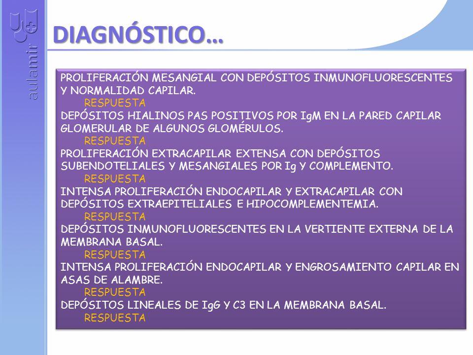 EN HIPERTENSO RESPUESTA CON ADENOPATÍAS HILIARES BILATERALES RESPUESTA EN PACIENTE EPILÉPTICO RESPUESTA NOCTURNA EN PACIENTE CON RAYNAUD Y HTA RESPUESTA EN PACIENTE CON NEFROPATÍA MEMBRANOSA RESPUESTA CON BRONCOESPASMO, FIEBRE Y EOSINOFILIA RESPUESTA HEMOPTOICA EN UDVP RESPUESTA EN NIÑO CON DIABETES Y ANTECEDENTES DE ÍLEO MECONIAL RESPUESTA EN PACIENTE CON HEMATURIA, PÚRPURA Y ANTECEDENTES DE SINUSITIS RESPUESTA NIÑO CON ANEMIA HEMOLÍTICA Y AMPOLLAS TIMPÁNICAS RESPUESTA EN HIPERTENSO RESPUESTA CON ADENOPATÍAS HILIARES BILATERALES RESPUESTA EN PACIENTE EPILÉPTICO RESPUESTA NOCTURNA EN PACIENTE CON RAYNAUD Y HTA RESPUESTA EN PACIENTE CON NEFROPATÍA MEMBRANOSA RESPUESTA CON BRONCOESPASMO, FIEBRE Y EOSINOFILIA RESPUESTA HEMOPTOICA EN UDVP RESPUESTA EN NIÑO CON DIABETES Y ANTECEDENTES DE ÍLEO MECONIAL RESPUESTA EN PACIENTE CON HEMATURIA, PÚRPURA Y ANTECEDENTES DE SINUSITIS RESPUESTA NIÑO CON ANEMIA HEMOLÍTICA Y AMPOLLAS TIMPÁNICAS RESPUESTA TOS