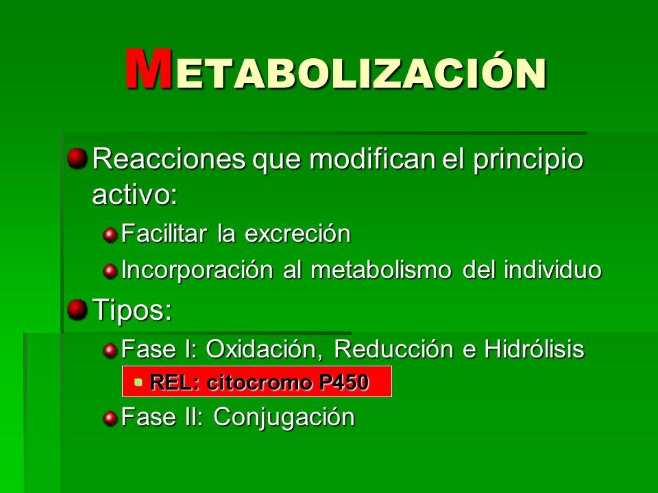 Reacciones que modifican el principio activo: Facilitar la excreción Incorporación al metabolismo del individuo Tipos: Fase I: Oxidación, Reducción e
