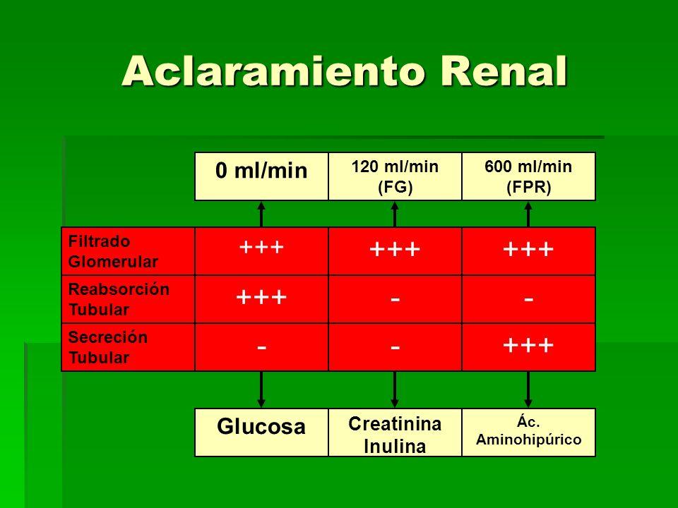 Filtrado Glomerular Reabsorción Tubular Secreción Tubular +++ - - - - 0 ml/min 120 ml/min (FG) 600 ml/min (FPR) Glucosa Creatinina Inulina Ác. Aminohi