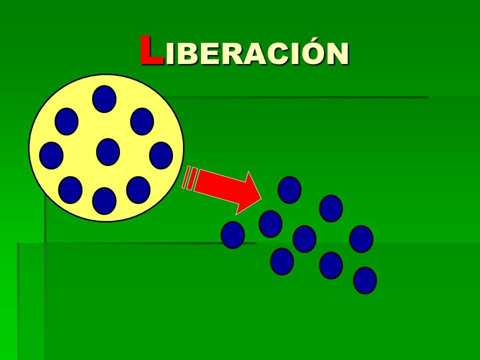 L IBERACIÓN