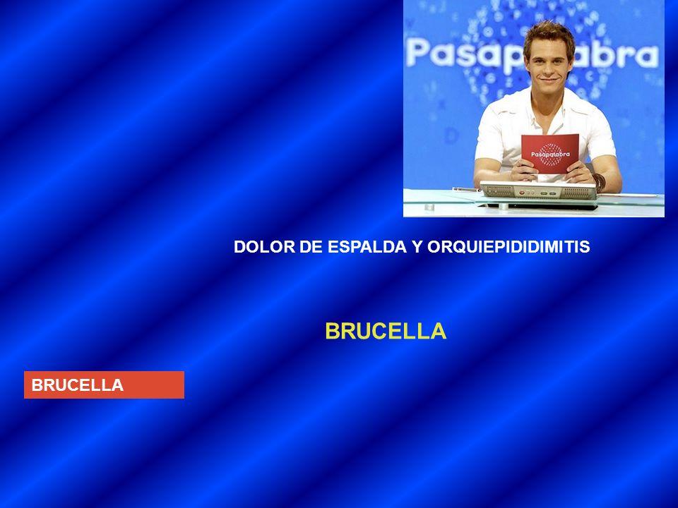 DOLOR DE ESPALDA Y ORQUIEPIDIDIMITIS BRUCELLA