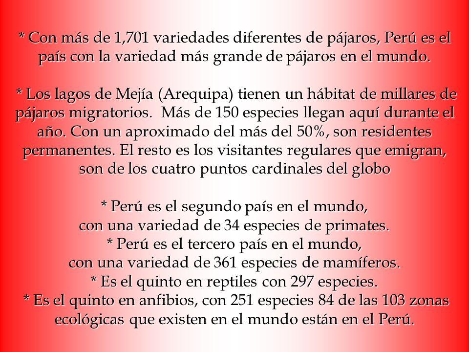 * Con más de 1,701 variedades diferentes de pájaros, Perú es el país con la variedad más grande de pájaros en el mundo. * Los lagos de Mejía (Arequipa