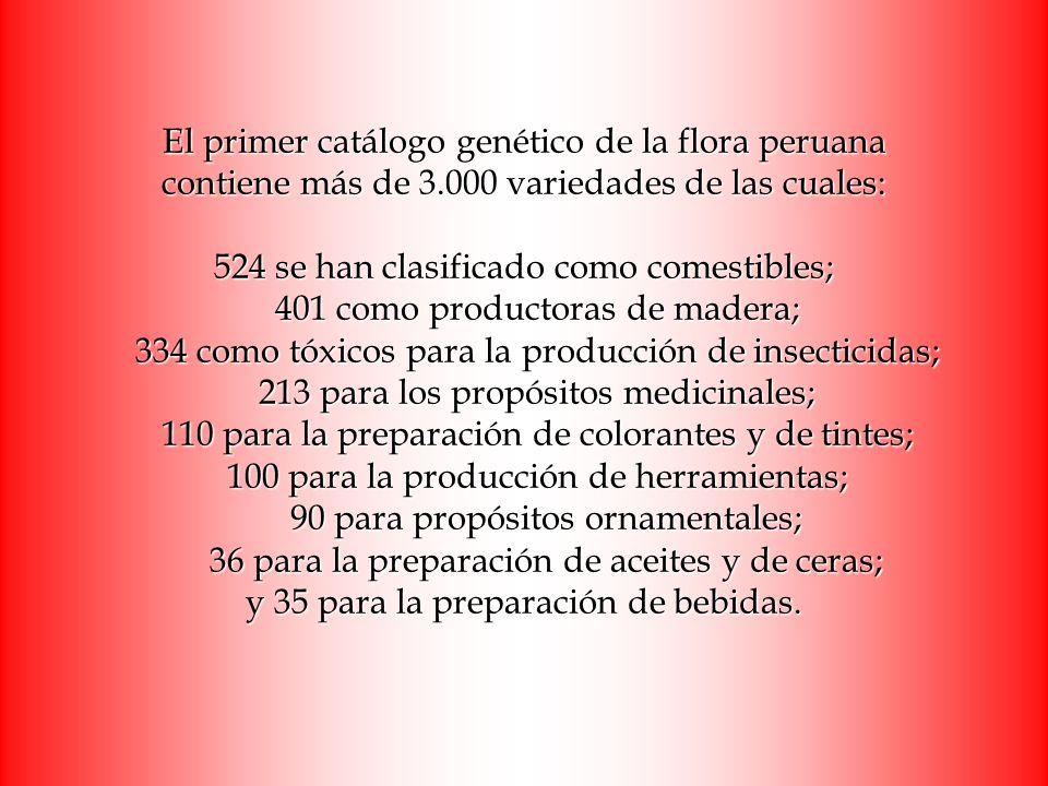 El primer catálogo genético de la flora peruana contiene más de 3.000 variedades de las cuales: 524 se han clasificado como comestibles; 401 como prod