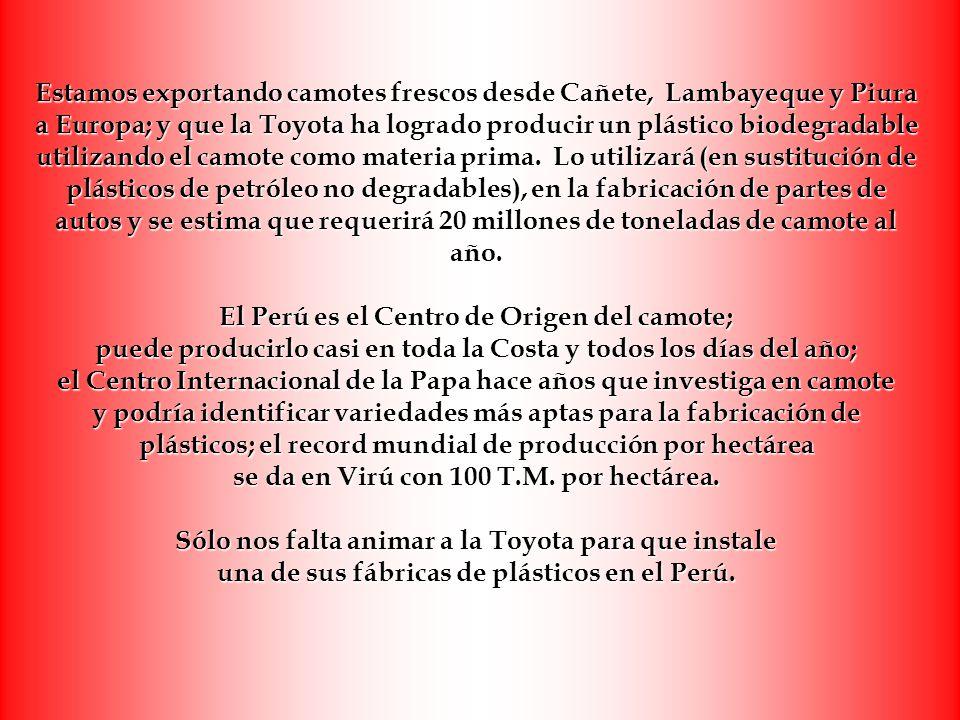 Estamos exportando camotes frescos desde Cañete, Lambayeque y Piura a Europa; y que la Toyota ha logrado producir un plástico biodegradable utilizando