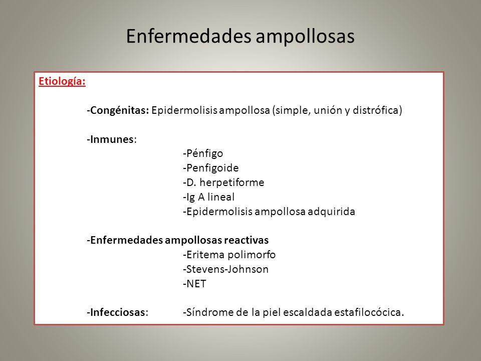 Enfermedades ampollosas Etiología: -Congénitas: Epidermolisis ampollosa (simple, unión y distrófica) -Inmunes: -Pénfigo -Penfigoide -D. herpetiforme -