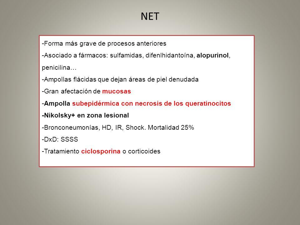 NET -Forma más grave de procesos anteriores -Asociado a fármacos: sulfamidas, difenlhidantoína, alopurinol, penicilina… -Ampollas flácidas que dejan á
