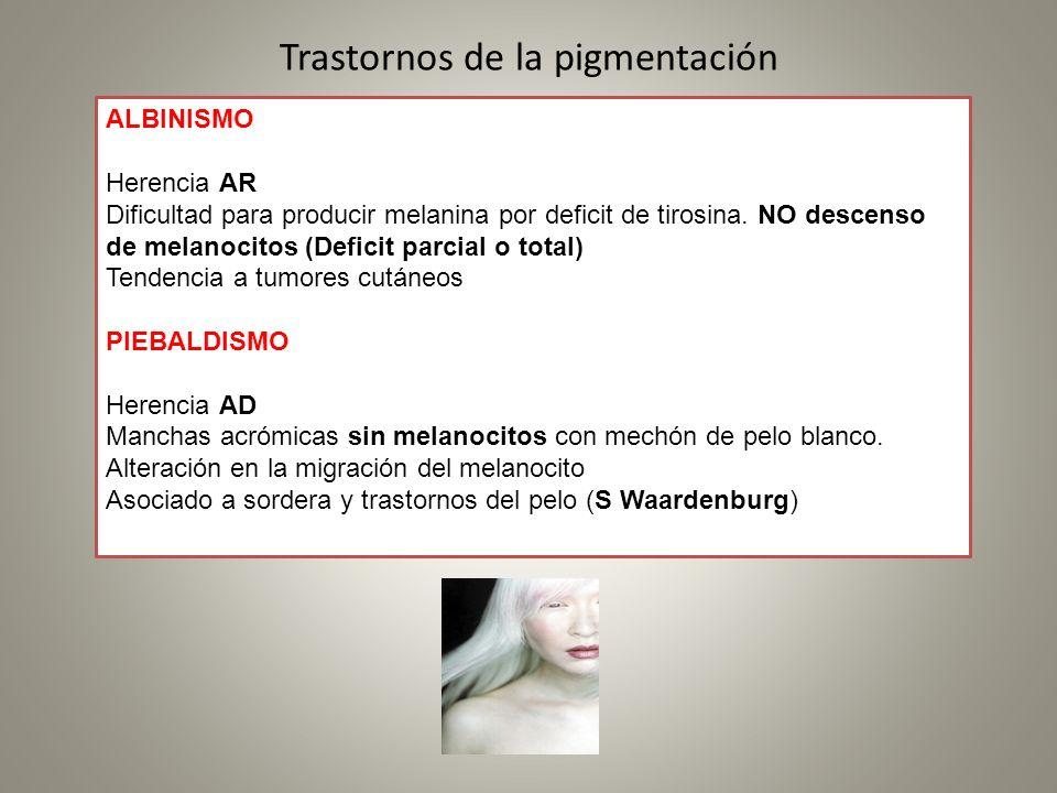 Trastornos de la pigmentación ALBINISMO Herencia AR Dificultad para producir melanina por deficit de tirosina. NO descenso de melanocitos (Deficit par