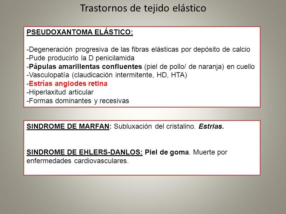 Trastornos de tejido elástico PSEUDOXANTOMA ELÁSTICO: -Degeneración progresiva de las fibras elásticas por depósito de calcio -Pude producirlo la D pe