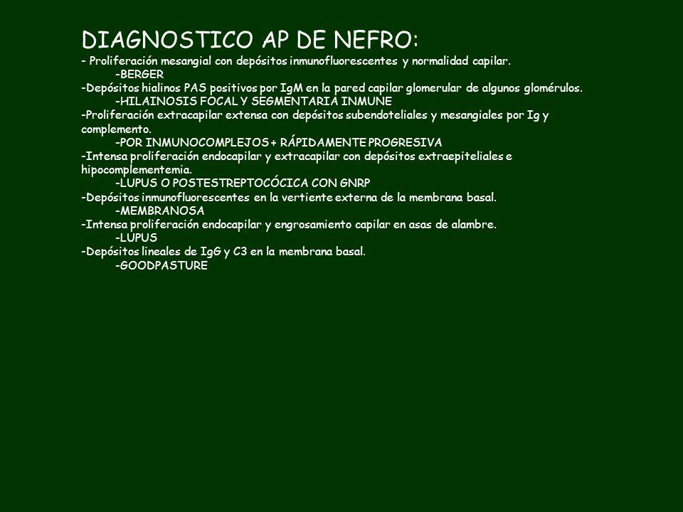 DIAGNOSTICO AP DE NEFRO: -Proliferación mesangial con depósitos inmunofluorescentes y normalidad capilar. -Depósitos hialinos PAS positivos por IgM en