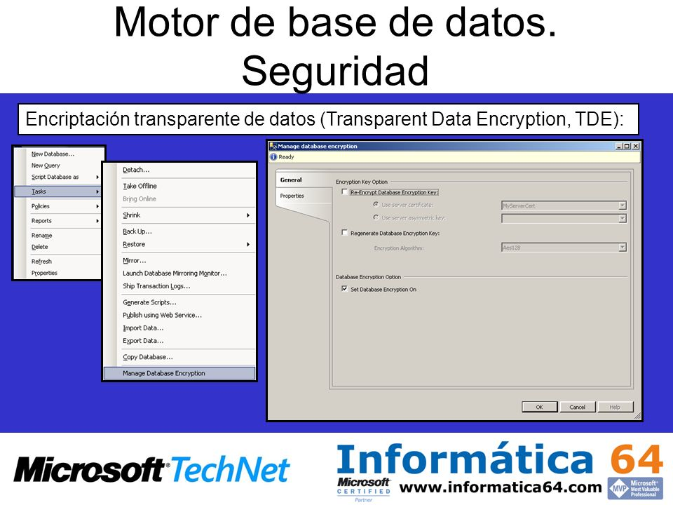 Motor de base de datos. Seguridad Encriptación transparente de datos (Transparent Data Encryption, TDE):