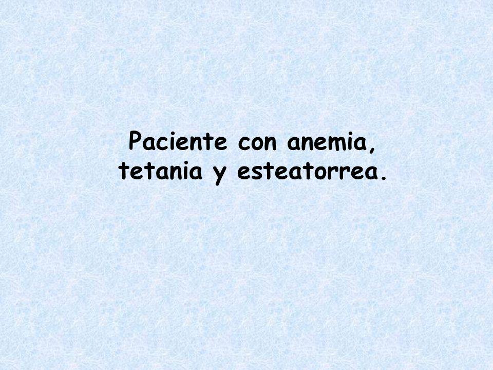 Paciente con anemia, tetania y esteatorrea.