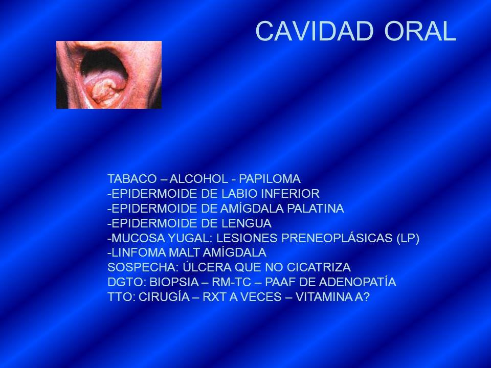 CAVIDAD ORAL TABACO – ALCOHOL - PAPILOMA -EPIDERMOIDE DE LABIO INFERIOR -EPIDERMOIDE DE AMÍGDALA PALATINA -EPIDERMOIDE DE LENGUA -MUCOSA YUGAL: LESION