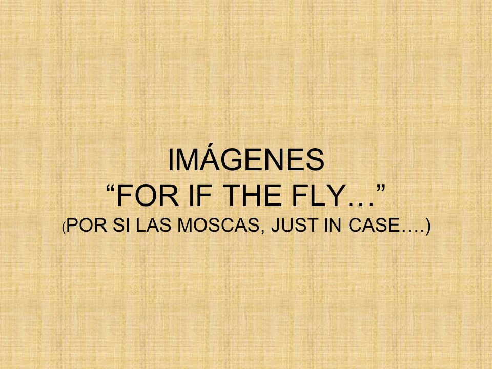 IMÁGENES FOR IF THE FLY… ( POR SI LAS MOSCAS, JUST IN CASE….)