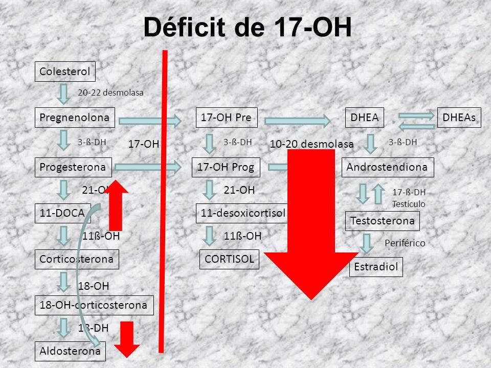 Déficit de 20-22 desmolasa Colesterol 20-22 desmolasa Pregnenolona Progesterona 11-DOCA Corticosterona 18-OH-corticosterona Aldosterona 3-ß-DH 21-OH 1