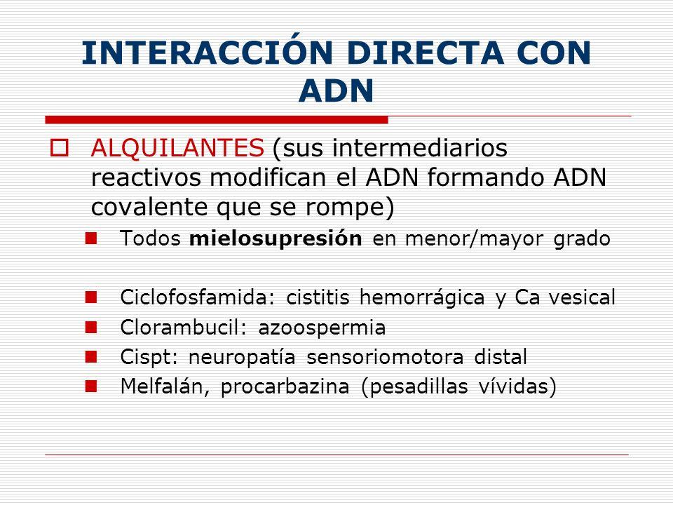ATB ANTINEOPLÁSICOS (lesionan al ADN por creación de RL) En general producen mucha hipersensibilidad, alopecia, alteraciones cutáneas y mucositis Bleomicina: Fibrosis pulmonar Doxo (adriamicina)/daunorrubicina y mitoxantrona: alteraciones CV (Miocardiopatía dilatada) -tecán, etopósido…