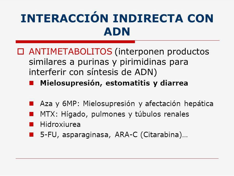 ANTIMITÓTICOS (inhiben el huso mitótico) Vesicantes, hipersensibilidad y mielosupresión Vincristina/blastina: SNC Paclitaxel: Neuropatía sensitiva y alteraciones de la conducción cardíaca
