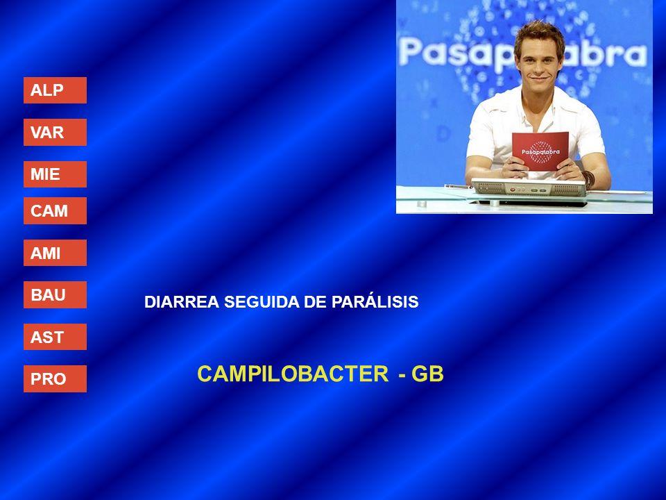 ALP VAR MIE CAM AMI BAU AST PRO DIARREA SEGUIDA DE PARÁLISIS CAMPILOBACTER - GB