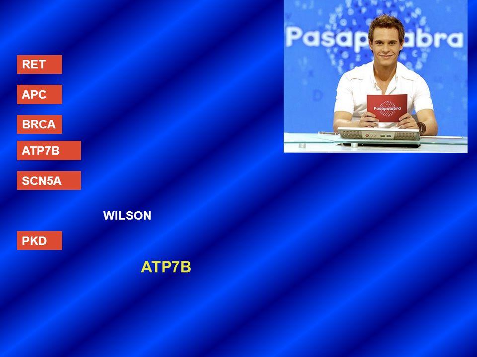 RET APC BRCA ATP7B SCN5A PKD WILSON ATP7B