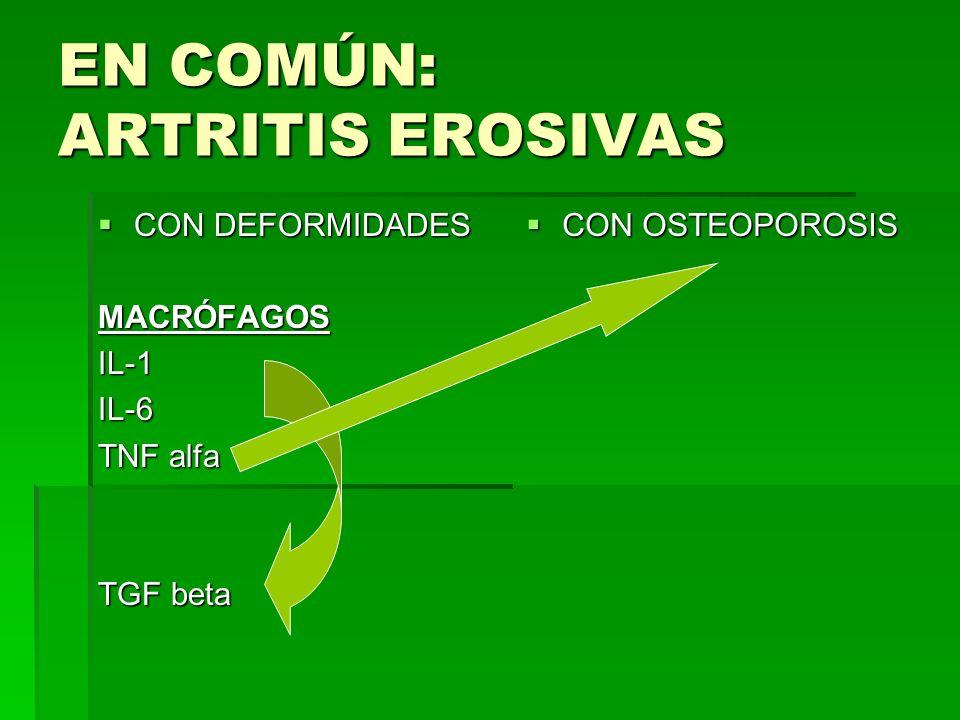 EN COMÚN: ARTRITIS EROSIVAS CON DEFORMIDADES CON DEFORMIDADESMACRÓFAGOSIL-1IL-6 TNF alfa TGF beta CON OSTEOPOROSIS CON OSTEOPOROSIS
