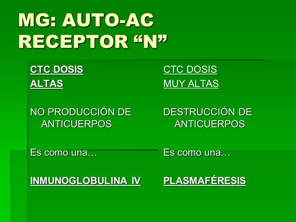 MG: AUTO-AC RECEPTOR N CTC DOSIS ALTAS NO PRODUCCIÓN DE ANTICUERPOS Es como una… INMUNOGLOBULINA IV CTC DOSIS MUY ALTAS DESTRUCCIÓN DE ANTICUERPOS Es