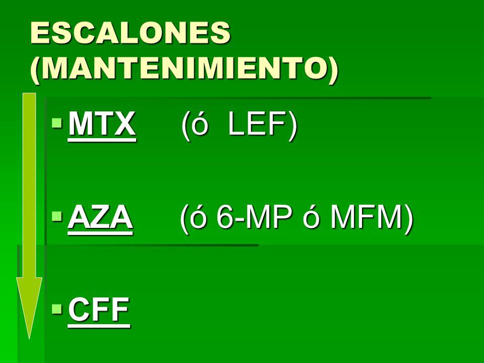 ESCALONES (MANTENIMIENTO) MTX (ó LEF) MTX (ó LEF) AZA (ó 6-MP ó MFM) AZA (ó 6-MP ó MFM) CFF CFF