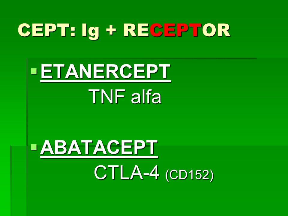 CEPT: Ig + RECEPTOR ETANERCEPT ETANERCEPT TNF alfa TNF alfa ABATACEPT ABATACEPT CTLA-4 (CD152) CTLA-4 (CD152)