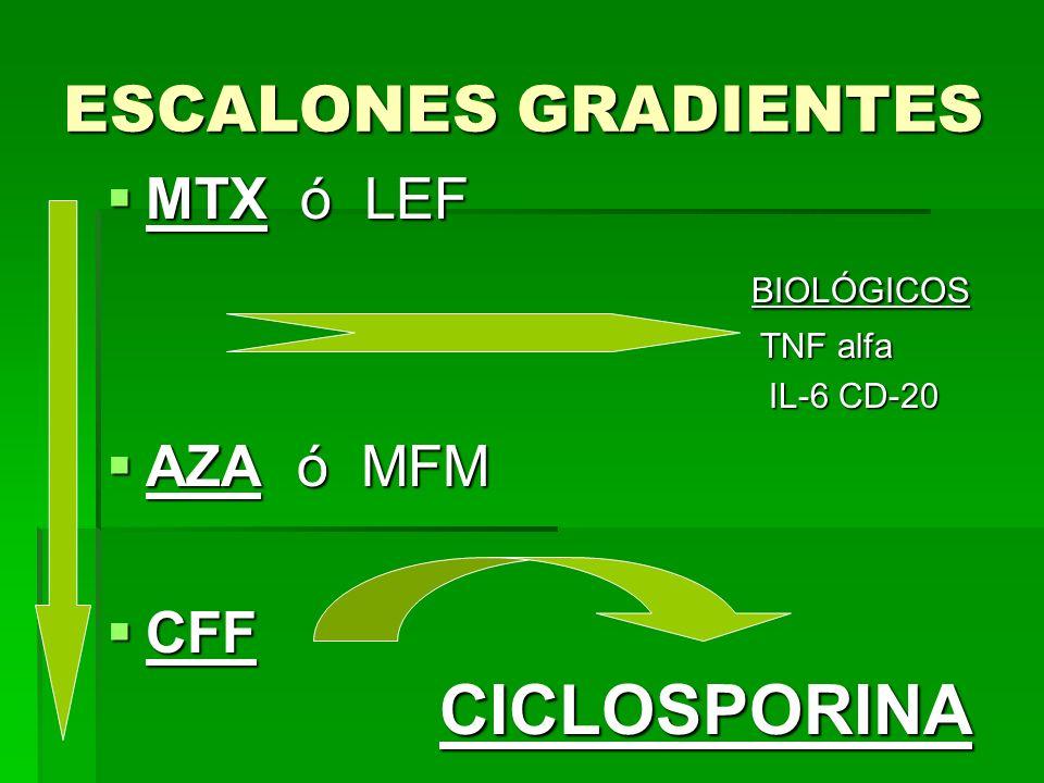 ESCALONES GRADIENTES MTX ó LEF MTX ó LEF BIOLÓGICOS BIOLÓGICOS TNF alfa TNF alfa IL-6 CD-20 IL-6 CD-20 AZA ó MFM AZA ó MFM CFF CICLOSPORINA CFF CICLOS