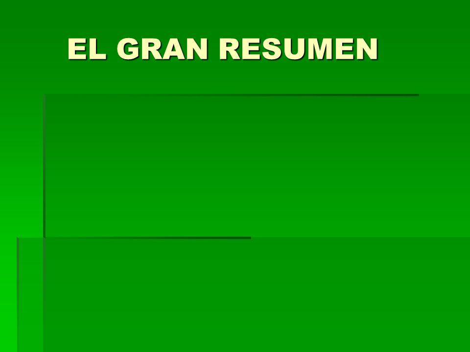 EL GRAN RESUMEN EL GRAN RESUMEN
