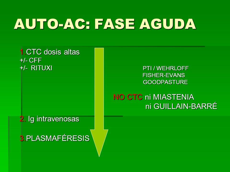 AUTO-AC: FASE AGUDA 1.CTC dosis altas +/- CFF +/- RITUXI PTI / WEHRLOFF FISHER-EVANS FISHER-EVANS GOODPASTURE GOODPASTURE NO CTC ni MIASTENIA NO CTC n
