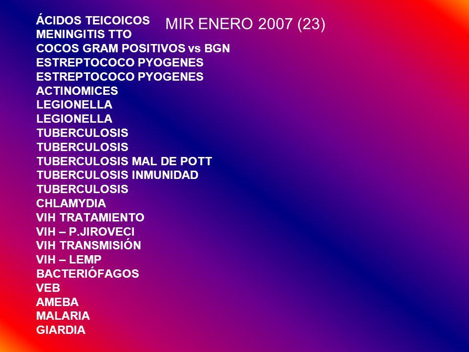 MIR ENERO 2007 (23) ÁCIDOS TEICOICOS MENINGITIS TTO COCOS GRAM POSITIVOS vs BGN ESTREPTOCOCO PYOGENES ACTINOMICES LEGIONELLA TUBERCULOSIS TUBERCULOSIS