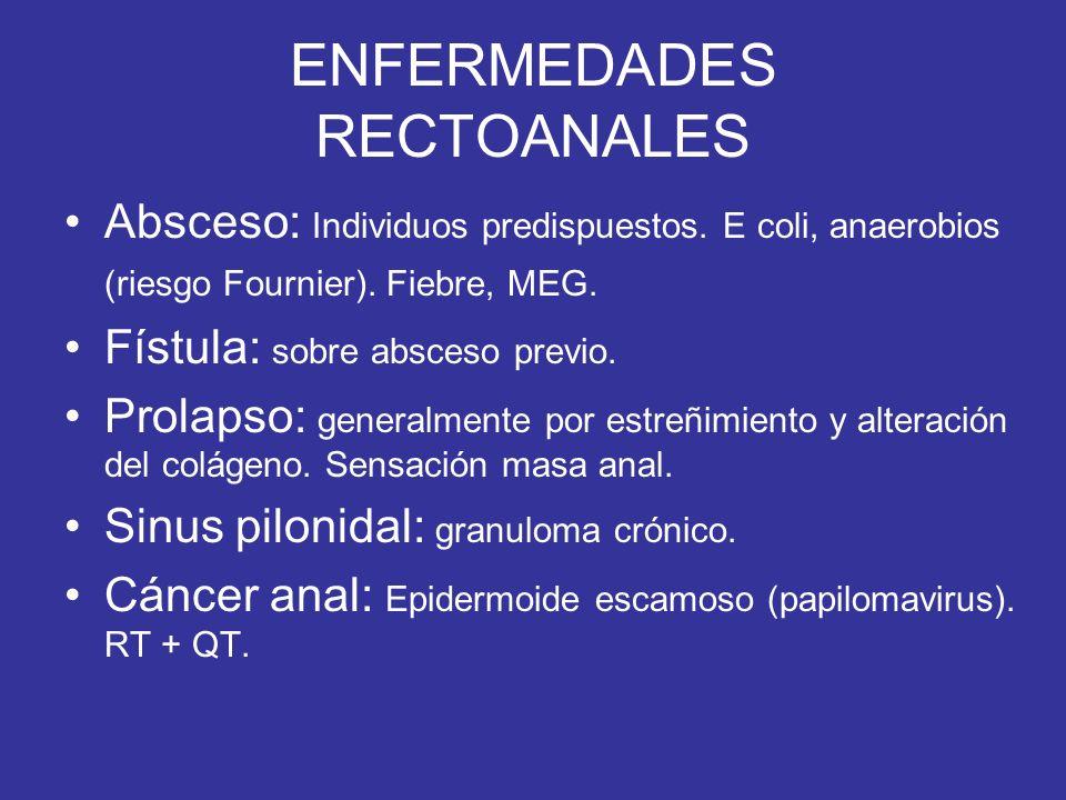 ENFERMEDADES RECTOANALES Absceso: Individuos predispuestos. E coli, anaerobios (riesgo Fournier). Fiebre, MEG. Fístula: sobre absceso previo. Prolapso