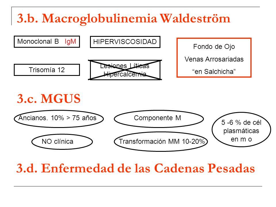 3.b. Macroglobulinemia Waldeström 3.c. MGUS 3.d. Enfermedad de las Cadenas Pesadas Monoclonal B IgM Trisomía 12 HIPERVISCOSIDAD Lesiones Líticas Hiper