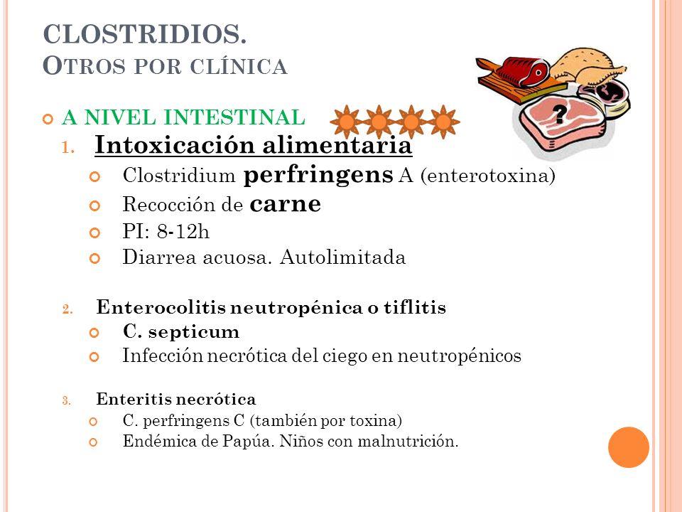 CLOSTRIDIOS. O TROS POR CLÍNICA A NIVEL INTESTINAL 1. Intoxicación alimentaria Clostridium perfringens A (enterotoxina) Recocción de carne PI: 8-12h D