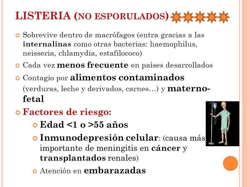 LISTERIA ( NO ESPORULADOS ) Sobrevive dentro de macrófagos (entra gracias a las internalinas como otras bacterias: haemophilus, neisseria, chlamydia,
