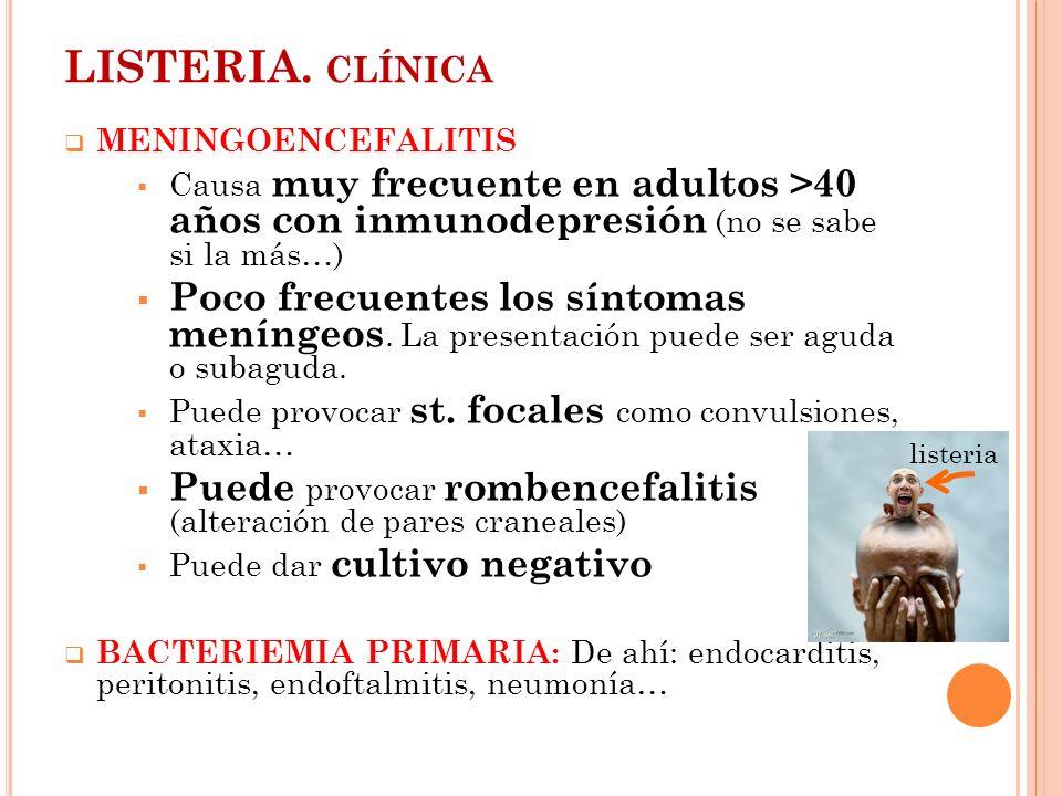 LISTERIA. CLÍNICA MENINGOENCEFALITIS Causa muy frecuente en adultos >40 años con inmunodepresión (no se sabe si la más…) Poco frecuentes los síntomas