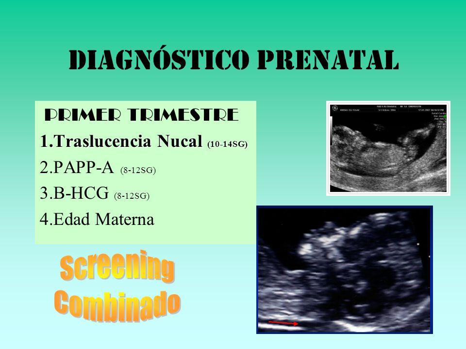 DIAGNÓSTICO PRENATAL PRIMER TRIMESTRE 1.Traslucencia Nucal (10-14SG) 2.PAPP-A (8-12SG) 3.B-HCG (8-12SG) 4.Edad Materna
