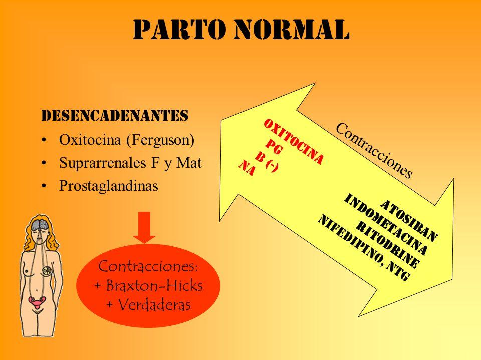 Parto normal DESENCADENANTES Oxitocina (Ferguson) Suprarrenales F y Mat Prostaglandinas Contracciones: + Braxton-Hicks + Verdaderas Oxitocina Atosiban