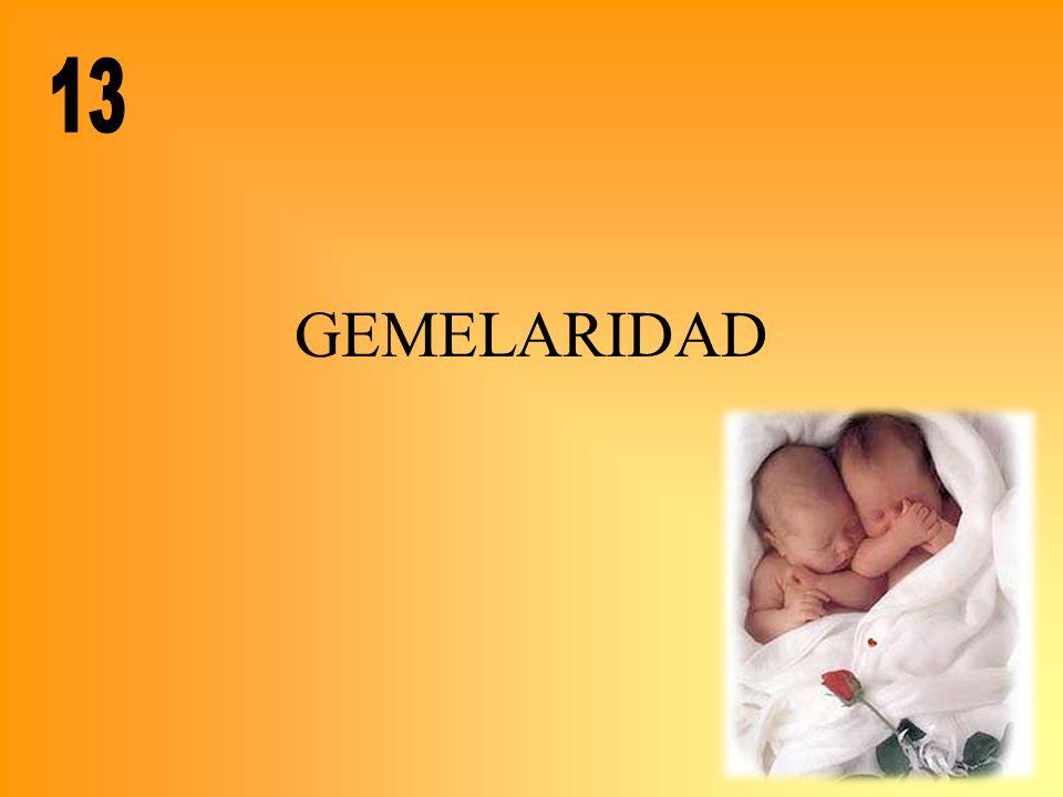 GEMELARIDAD