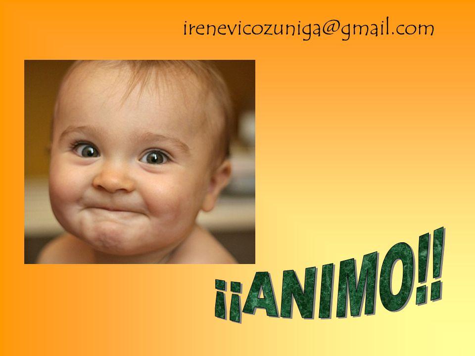 irenevicozuniga@gmail.com