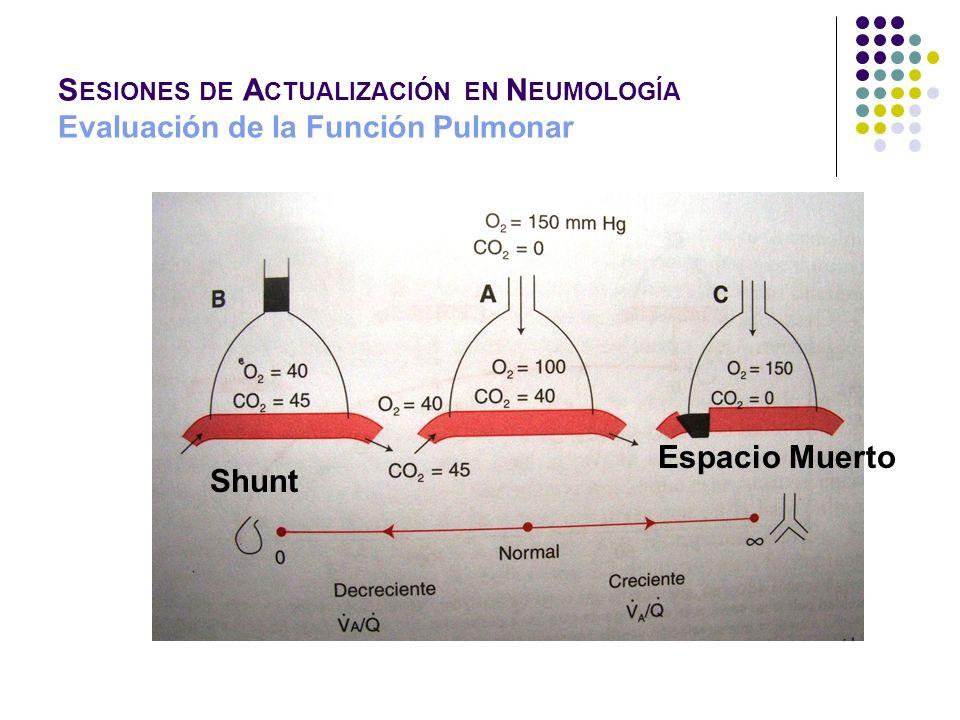S ESIONES DE A CTUALIZACIÓN EN N EUMOLOGÍA Evaluación de la Función Pulmonar Shunt Espacio Muerto
