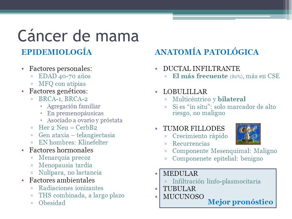 Mejor pronóstico Cáncer de mama EPIDEMIOLOGÍA Factores personales: EDAD 40-70 años MFQ con atipias Factores genéticos: BRCA-1, BRCA-2 Agregación famil