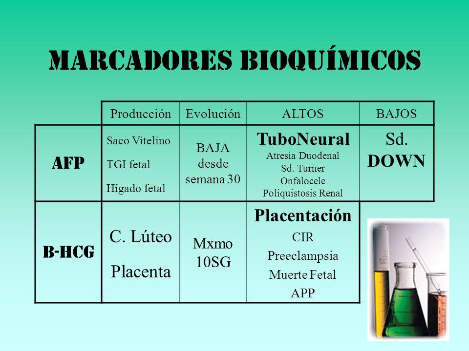 MARCADORES BIOQUÍMICOS ProducciónEvoluciónALTOSBAJOS AFP Saco Vitelino TGI fetal Hígado fetal BAJA desde semana 30 TuboNeural Atresia Duodenal Sd. Tur