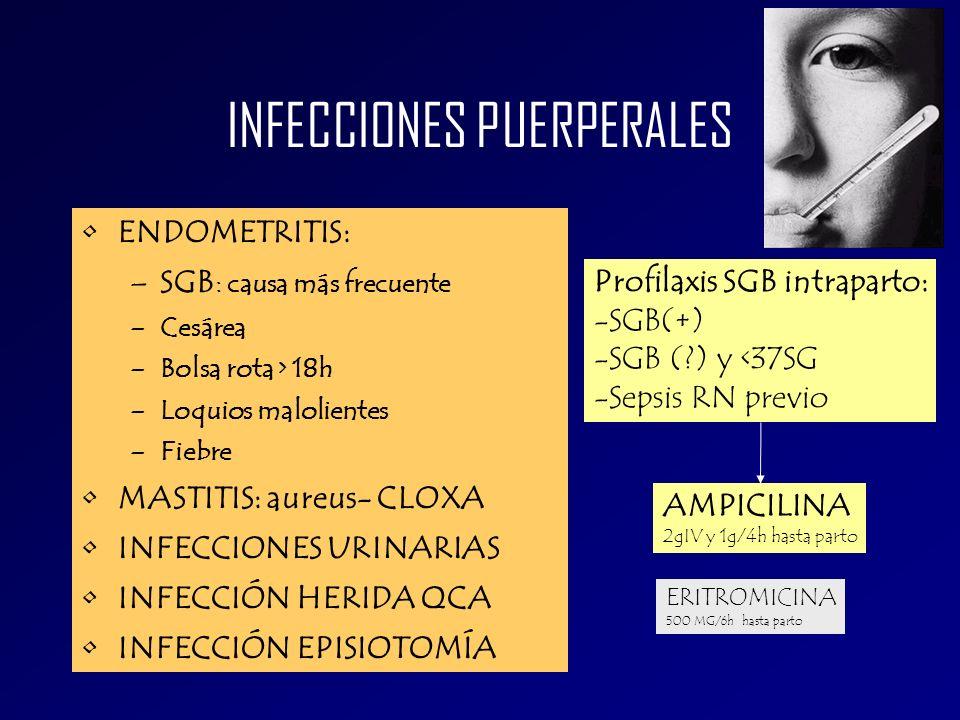 INFECCIONES PUERPERALES ENDOMETRITIS: –SGB : causa más frecuente –Cesárea –Bolsa rota > 18h –Loquios malolientes –Fiebre MASTITIS: aureus- CLOXA INFEC